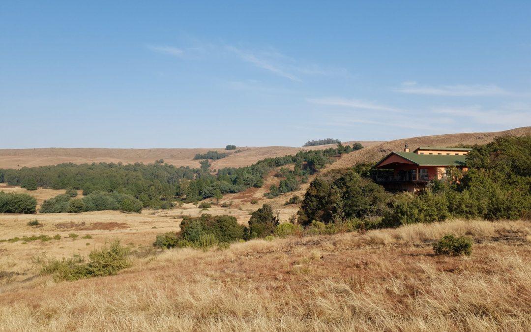 Tillietudlem Hleka Manzi Lodge