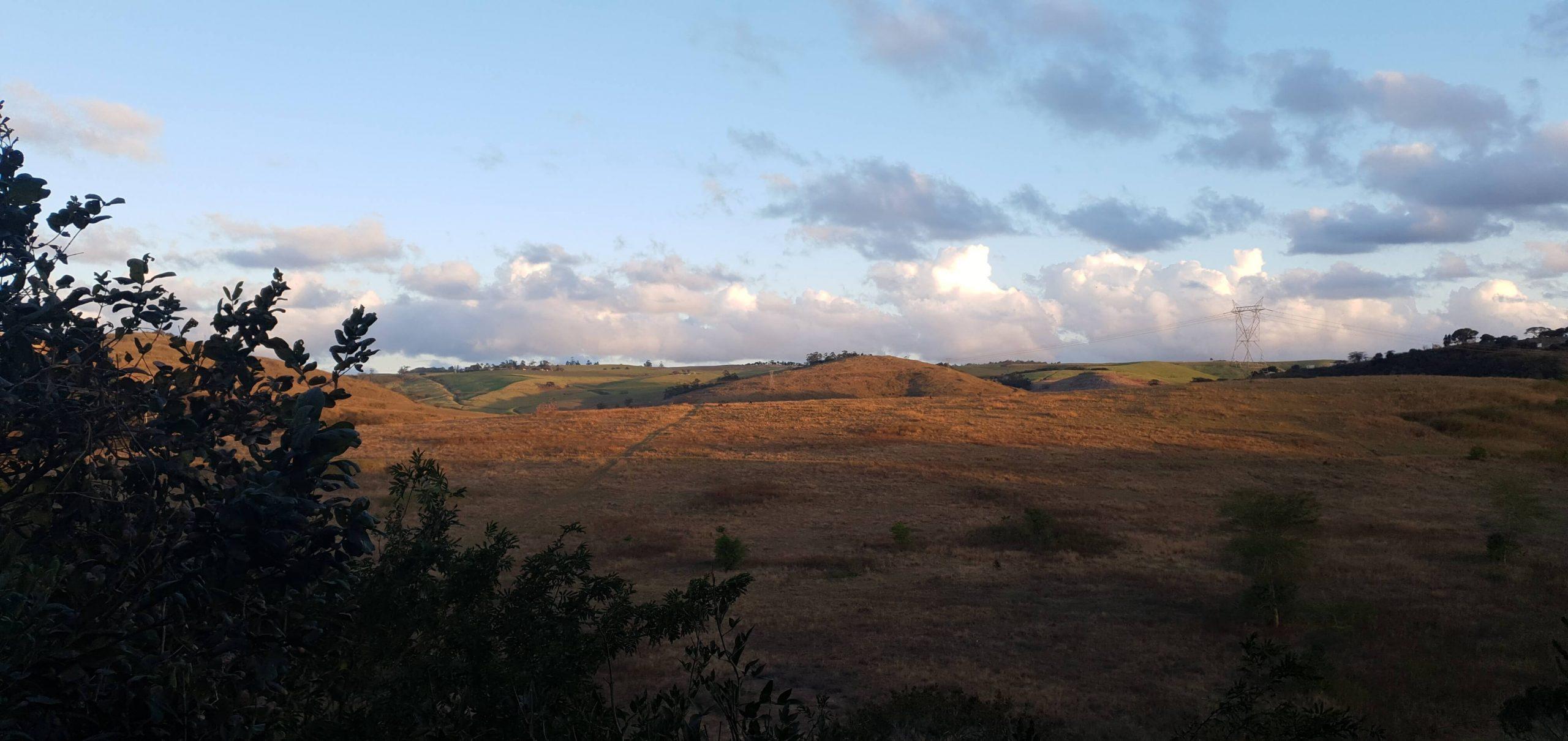 View over Rain Farm Lodge