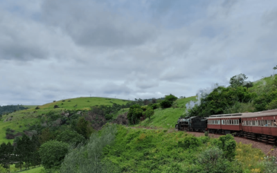 The Umgeni Steam Train – Activity in the Valley of 1000 Hills